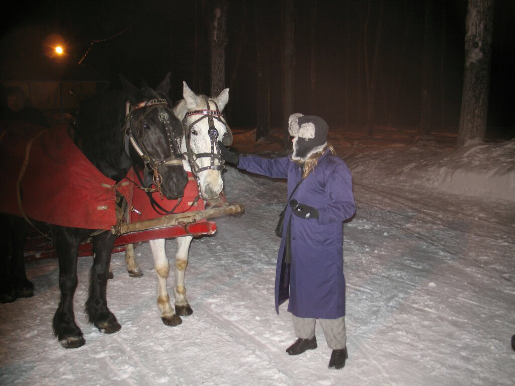 Patricia Lawrence, Executive Producer with Sugar Shack horses